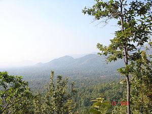 Huai Kha Khaeng Wildlife Sanctuary - Image: ห้วยขาแข้ง 051