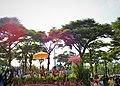 เทศกาลสงกรานต์กรุงเทพมหานคร 2562 Photographed by Peak Hora (29).jpg
