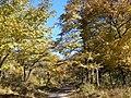 十里仙境 - Fairyland - 2010.10 - panoramio.jpg