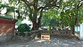 台中神社玉垣1.jpg