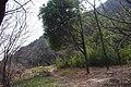 山景 - panoramio (4).jpg