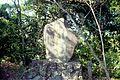 日野江城跡 - panoramio (1).jpg