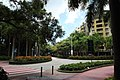 杜鹃山西街与香山中街、香山西街交汇处 - panoramio.jpg