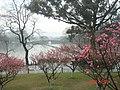 杭州. 西湖. 西泠桥 - panoramio.jpg