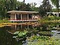 水生植物区 - Aquatic Plants Area - 2013.09 - panoramio.jpg