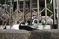琴平神社 - panoramio (1).jpg