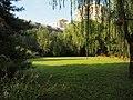 草坪 - Lawn - 2011.06 - panoramio.jpg
