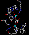 1-3 BPG in active site.png