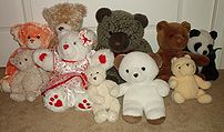 Ten (10) different Teddy Bears of varying colo...