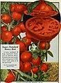 112 superb varieties for market gardeners season of 1926 (1926) (16665001632).jpg