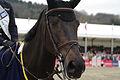 13-04-21-Horses-and-Dreams-Siegerehrung-DKB-Riders-Tour (36 von 46).jpg