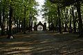 1460viki Cmentarz żydowski przy ul. Lotniczej. Foto Barbara Maliszewska.jpg