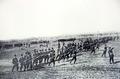 1902 - Regimentul Teleorman nr. 20.png