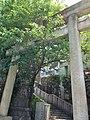 1 Chome Higashigotanda, Shinagawa-ku, Tōkyō-to 141-0022, Japan - panoramio.jpg