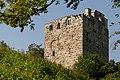 2006-Alberswil-Ruine.jpg