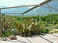 2008 07 Botanical Garden Meran 71560R0402.jpg