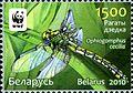 2010. Stamp of Belarus 26-2010-03-08-m4.jpg