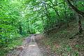 2014 Prowincja Tawusz, Widoki z trasy turystycznej E4 (03).jpg