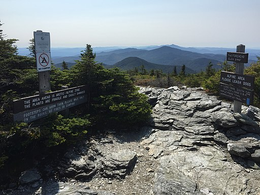 2017-09-11 12 09 19 View south along the Long Trail at the junction with the Maple Ridge Trail on the Forehead of Mount Mansfield within Mount Mansfield State Forest in Stowe, Lamoille County, Vermont