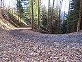 2017-11-24 (108) Haltgraben - Grüntalkogelhütte.jpg