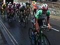 2017 Women's Tour stage 3 - 034 Kasia Niewiadoma in Warwick.JPG