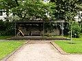 2018-06-18-bonn-meckenheimer-allee-169-botanischer-garten-clemens-august-buche-01.jpg