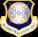 281st Combat Communications Group
