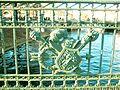 328. St. Petersburg. 2nd Garden Bridge (fence fragment).jpg
