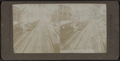 3rd avenue elevated R.R., N. Y. City, from Robert N. Dennis collection of stereoscopic views.png