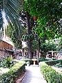 608 Casa Museu Benlliure (València), jardí.jpg