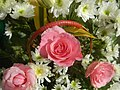 6272Flowers of the Philippines 06.jpg