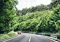 A38, Great Haldon - geograph.org.uk - 1368442.jpg