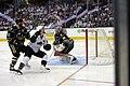 AHL (40579144021).jpg