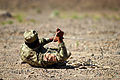 ANSF teach their own to defeat explosives threat 120405-F-BT552-033.jpg