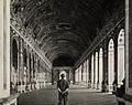 A Yank in Versailles.jpg