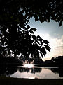 A fonte no por do sol, Parque Ibirapuera.jpg
