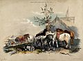 A group of horses halting on a journey for refreshment and a Wellcome V0021816.jpg