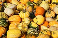 A selection of cucurbits from Alkmaar, The Netherlands 03.jpg