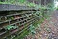 A walk through Twyford Wood, No 9 - geograph.org.uk - 272121.jpg