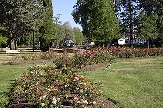 Parkes, Australian Capital Territory Suburb of Canberra, Australian Capital Territory