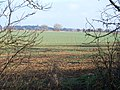 Across the field - geograph.org.uk - 1690801.jpg