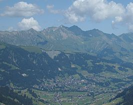 Adelboden schutzwald3.jpg