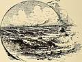 Adolph Sutro (1895) (14578539437).jpg