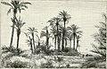 Africa (1878) (14775902492).jpg