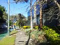 Alexandria NSW 2015, Australia - panoramio (113).jpg