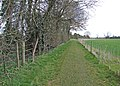 All weather path - geograph.org.uk - 1339829.jpg