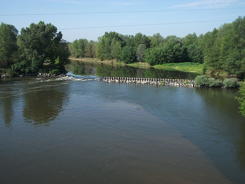 Allier river, upstream bridge of departmental road 130 (Billy and Marcenat) [8589]
