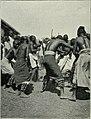 Am Tendaguru - Leben und Wirken einer deutschen Forschungsexpedition zur Ausgrabung vorweltlicher Riesensaurier in Deutsch-Ostafrika (1912) (17977632910).jpg