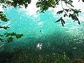 Amazing water (7566212258).jpg