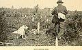 American game-bird shooting (1910) (14775333923).jpg